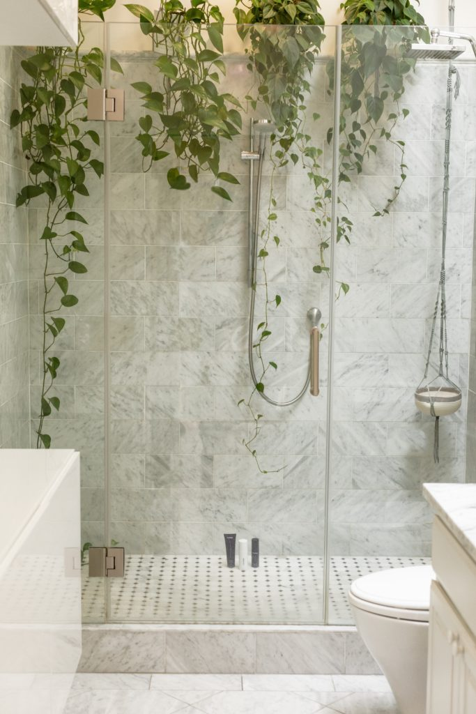 hanging plants in small bathrooms